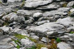 Pedra calcária, o parque nacional de Burren, Irlanda Fotografia de Stock