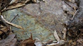 Pedra cercada pela madeira Shredded imagens de stock