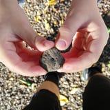 Pedra cinzenta à disposição Imagem de Stock Royalty Free