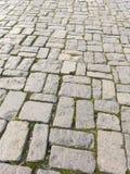 Pedra cinzenta Fotografia de Stock