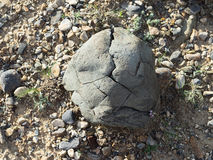 A pedra com quebras, textura Imagem de Stock