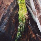 Pedra da caverna fotografia de stock
