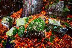 Pedra da montanha de Kyoto fotografia de stock