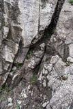 Pedra da montanha e grama verde Fundo Textura borr?o fotografia de stock