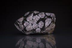 Pedra da rocha da obsidiana do floco de neve imagem de stock