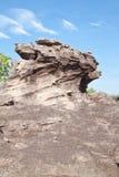 Pedra da tartaruga e céu azul Fotografia de Stock Royalty Free