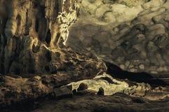 Pedra de Crocodrile Imagens de Stock
