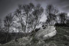 Pedra de moer em Derbyshire, Reino Unido foto de stock