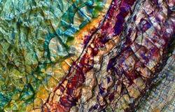 A pedra de mármore textures o fundo Fotografia de Stock