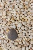 Pedra de White River Imagem de Stock