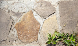 Pedra do fundo Fotografia de Stock Royalty Free