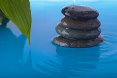 A água de pedra do zen derramam e a folha da planta da paz Foto de Stock
