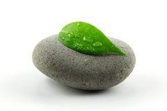 Pedra do zen com folha fotos de stock