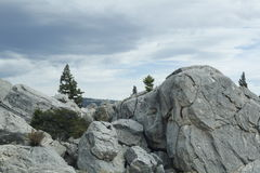 Pedra e árvores em Yellowstone Fotografia de Stock