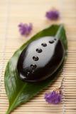Pedra e folha do zen com gotas da água Fotos de Stock Royalty Free