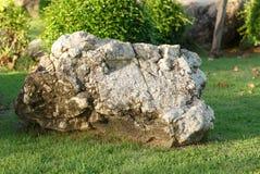 Pedra e rocha grandes no jardim e no parque Foto de Stock