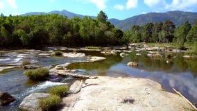 Pedra em fluir o rio contra o andscape das árvores e dos montes video estoque
