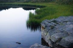 A pedra está na água Fotos de Stock