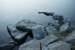 A pedra está na água Foto de Stock