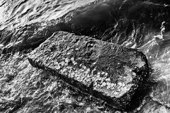 Pedra grande no litoral Fotografia de Stock Royalty Free