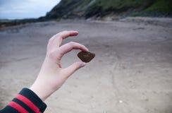 Pedra Heart-shaped fotografia de stock royalty free