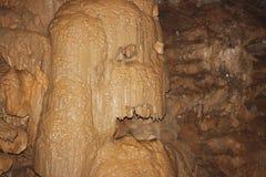 Pedra molhada Fotografia de Stock