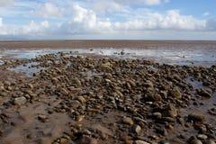 Pedra na praia Foto de Stock Royalty Free