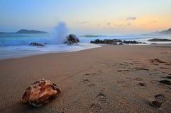 Pedra na praia Imagens de Stock
