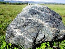 Pedra no campo Imagem de Stock Royalty Free
