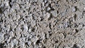 Pedra porosa Imagens de Stock