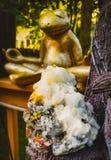 Pedra preciosa do geode com meditar a rã imagens de stock royalty free