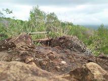 Pedra que dá uma vista natural fotos de stock royalty free