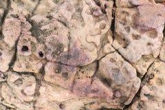 A pedra quebrou Fotos de Stock