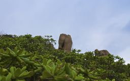 A pedra rezar foto de stock