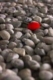 Pedra vermelha Fotos de Stock