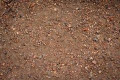 Pedra vermelha pequena Fotografia de Stock