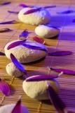 Pedras brancas e pretas, pétalas roxas, e velas no vertical de bambu Fotos de Stock