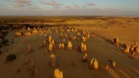 Pedras calcárias amarelas no macaco Mia video estoque