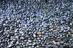 Pedras cinzentas Imagem de Stock
