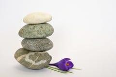 Pedras cinzentas do zen com açafrão de bambu do en no fundo branco vazio Fotos de Stock Royalty Free