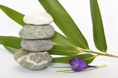 Pedras cinzentas do zen com açafrão de bambu do en no fundo branco vazio Imagem de Stock Royalty Free