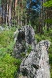 Pedras cinzentas na linha da segunda guerra mundial, região da defesa de Leninegrado, Rússia imagem de stock
