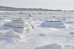 Pedras cobertas no gelo no oceano na Suécia Imagens de Stock Royalty Free