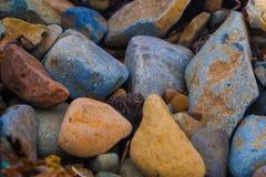 Pedras coloridas do mar Imagens de Stock Royalty Free