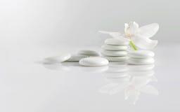 Pedras com orquídea Imagens de Stock Royalty Free