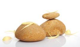 Pedras com pétalas amarelas Imagens de Stock Royalty Free