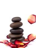 Pedras com pétalas cor-de-rosa Imagem de Stock