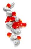 Pedras com pétalas cor-de-rosa Imagem de Stock Royalty Free