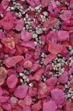 pedras cor-de-rosa Imagens de Stock
