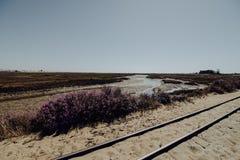 Pedras d ` el Reja pociąg blisko Tavira Ślad prowadzi Barril plaża na południowym portugalczyka wybrzeżu Atlantyk zdjęcie royalty free